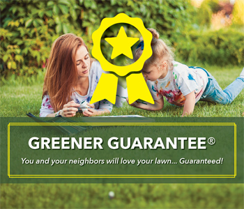 D&B Greener Guarantee