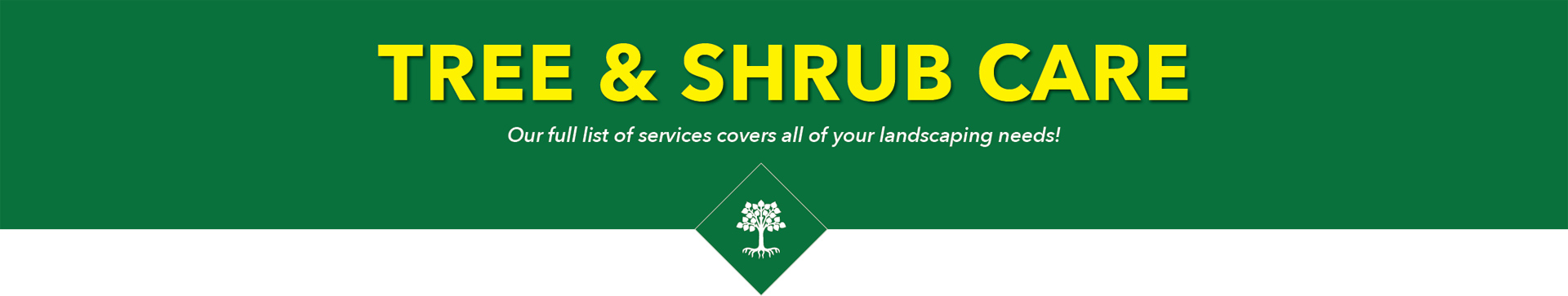 Tree and Shrub Care Programs
